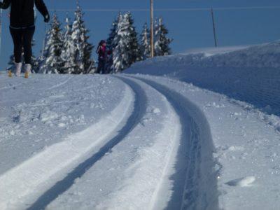 Ski de fond sur la plateau d'Agy